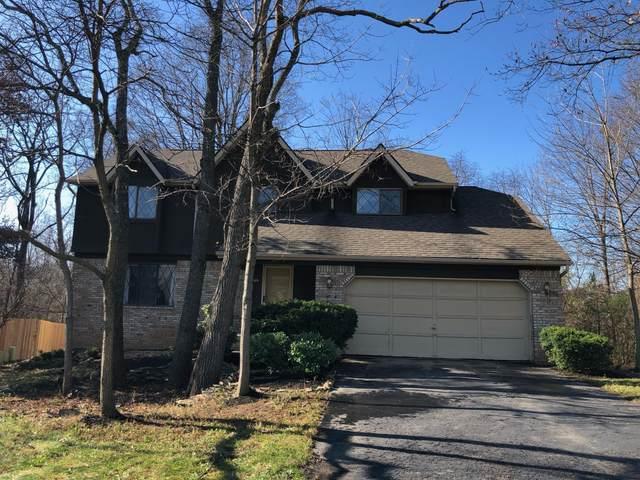 13601 Capetown Avenue, Pickerington, OH 43147 (MLS #220041313) :: Signature Real Estate