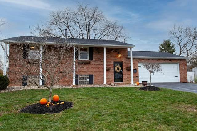 63 Murnane Street, Westerville, OH 43081 (MLS #220041403) :: Jarrett Home Group