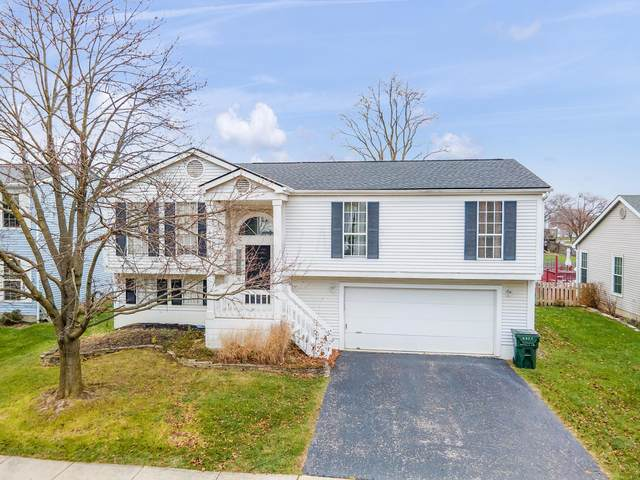 4922 Ivywild Avenue, Hilliard, OH 43026 (MLS #220041447) :: RE/MAX ONE