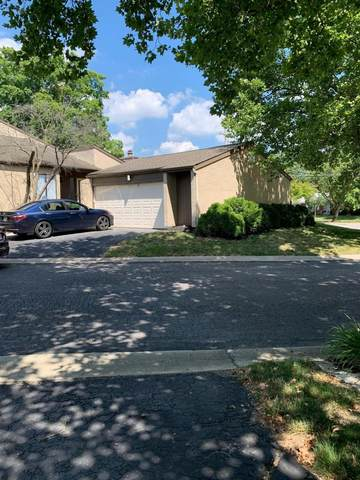 332 Peachtree Court, Westerville, OH 43081 (MLS #220041626) :: Signature Real Estate