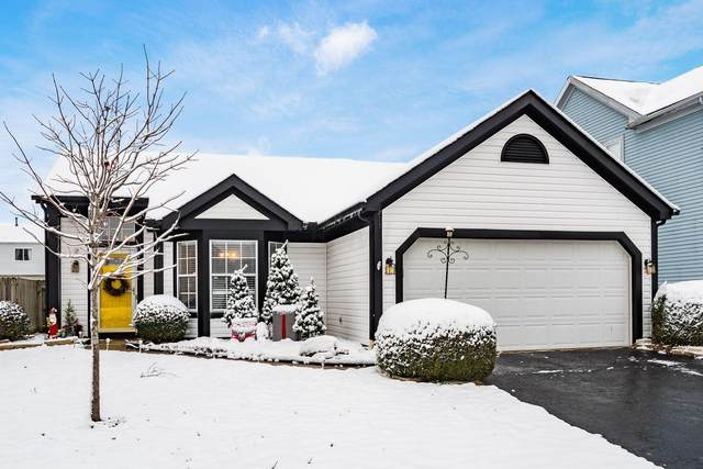 5064 Shady Oak Drive, Hilliard, OH 43026 (MLS #220041895) :: Berkshire Hathaway HomeServices Crager Tobin Real Estate