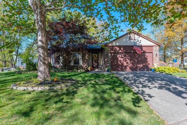 2508 Sawmill Forest Avenue, Dublin, OH 43016 (MLS #220042027) :: Exp Realty