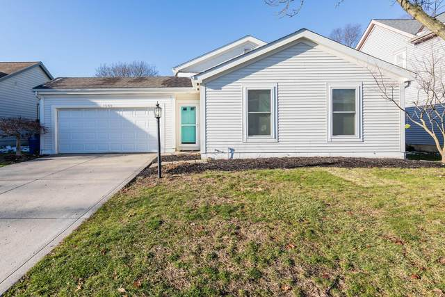 1583 Fallhaven Drive, Columbus, OH 43235 (MLS #220042090) :: The Raines Group