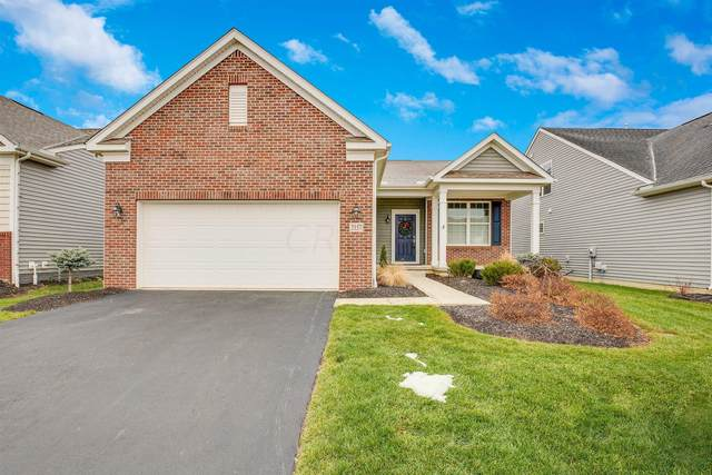 2157 Common Bent Drive, Sunbury, OH 43074 (MLS #220042451) :: MORE Ohio