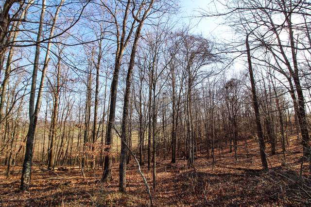 0 Peters Creek Road, New Concord, OH 43762 (MLS #220042517) :: The Holden Agency