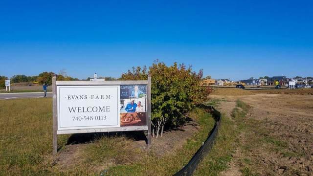 5582 Evans Farm Drive, Lewis Center, OH 43035 (MLS #220043579) :: Ackermann Team