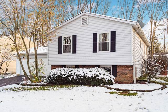 3969 Blueberry Hollow Road, Columbus, OH 43230 (MLS #220043821) :: Susanne Casey & Associates