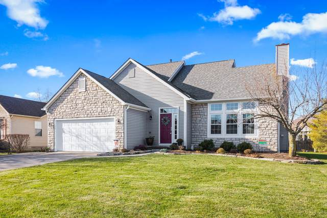 8396 Juniper Drive, Lewis Center, OH 43035 (MLS #220044218) :: 3 Degrees Realty