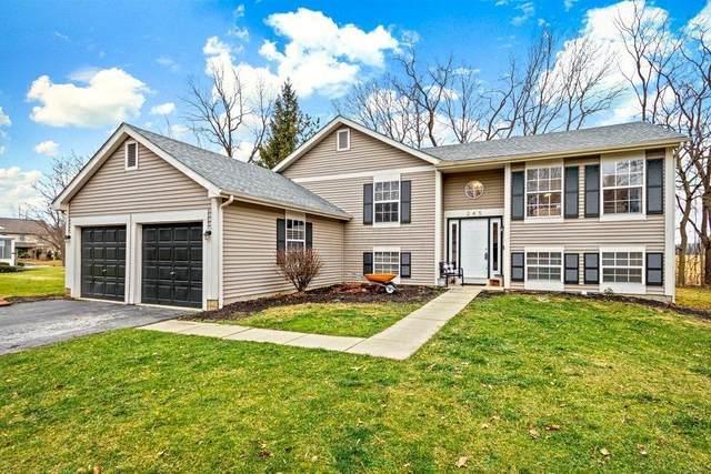 245 Timber Ridge Drive, Pickerington, OH 43147 (MLS #221000373) :: HergGroup Central Ohio