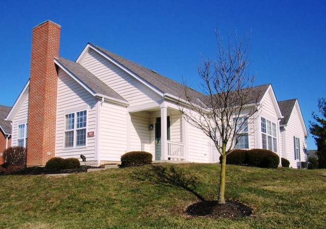 564 Hickory Bluff Drive, Columbus, OH 43213 (MLS #221001654) :: Exp Realty