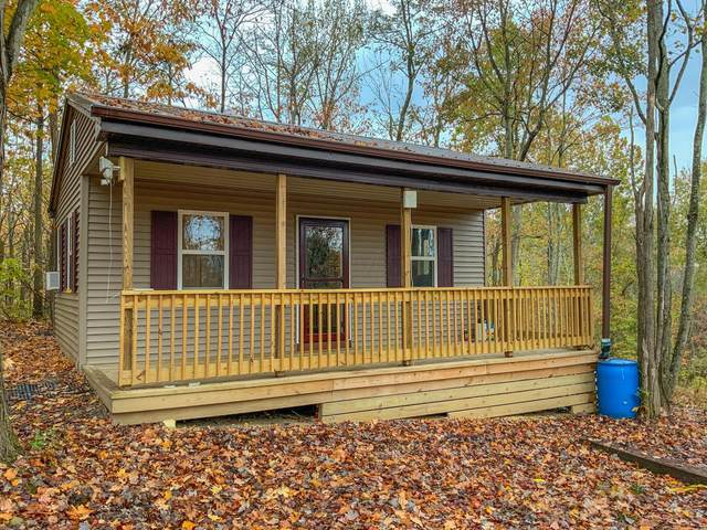 677 Dickens Road, Oak Hill, OH 45656 (MLS #221001659) :: The Raines Group