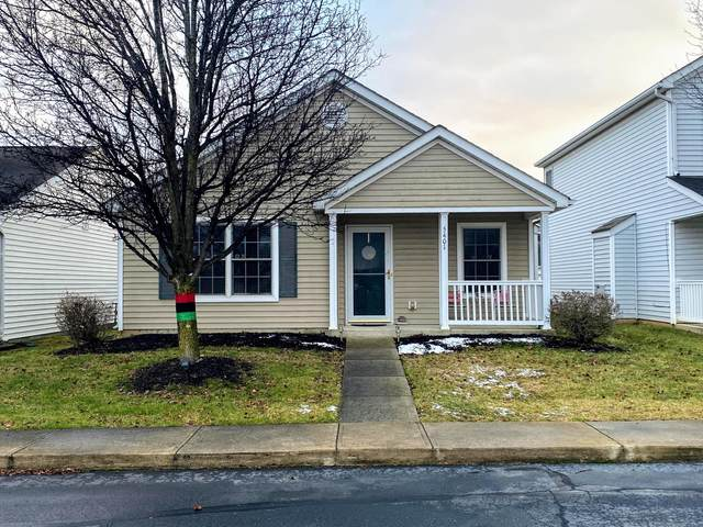 5401 Dungarven Street Design, Canal Winchester, OH 43110 (MLS #221001796) :: CARLETON REALTY