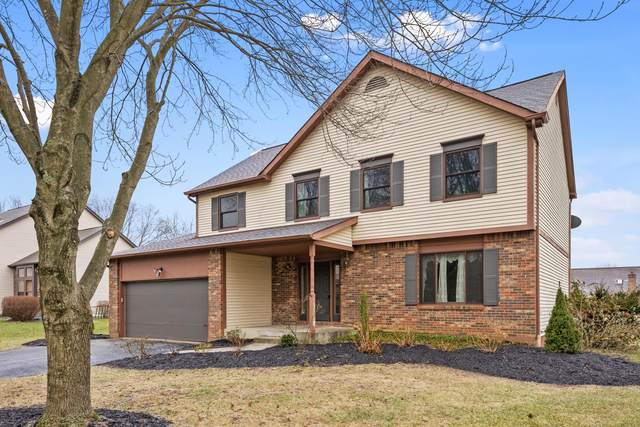 257 Cherrystone Drive S, Columbus, OH 43230 (MLS #221002289) :: The Holden Agency