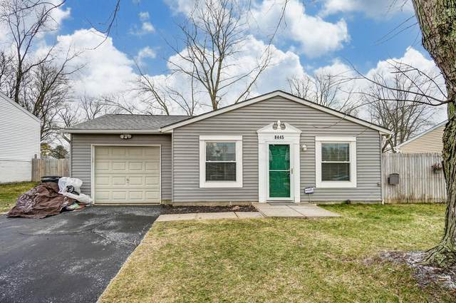8445 Silverbell Avenue, Galloway, OH 43119 (MLS #221002327) :: MORE Ohio