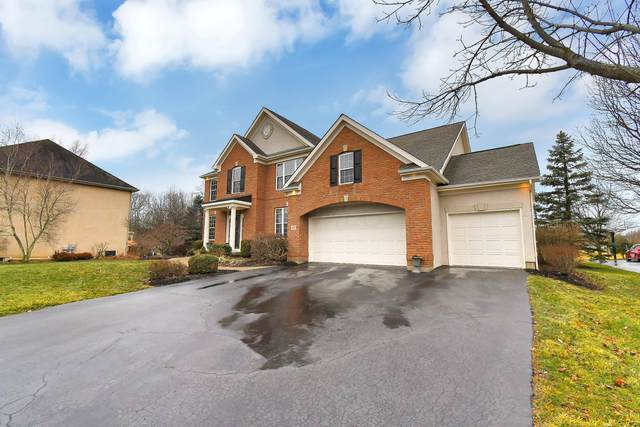 425 Woodard Place, Powell, OH 43065 (MLS #221002388) :: The Willcut Group