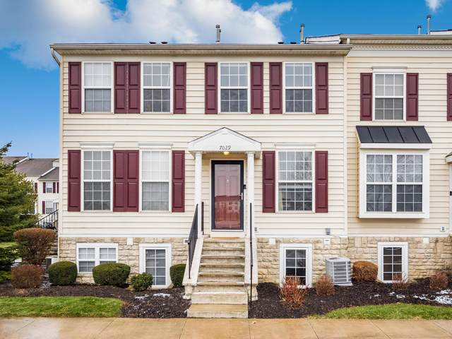 7029 Pleasant Colony Way 15-7029, New Albany, OH 43054 (MLS #221002421) :: The Willcut Group