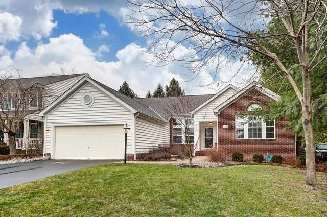 156 Rivers Edge Way, Gahanna, OH 43230 (MLS #221002510) :: Signature Real Estate
