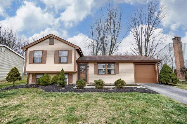 4147 Blue Bonnet Court, Westerville, OH 43081 (MLS #221002541) :: The Holden Agency