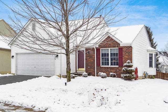 8494 Olenbrook Drive, Lewis Center, OH 43035 (MLS #221003069) :: 3 Degrees Realty