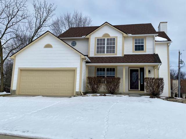 4160 Panorama Drive, Columbus, OH 43230 (MLS #221003663) :: Shannon Grimm & Partners Team