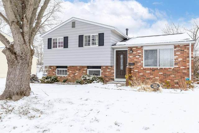 3536 Karikal Drive, Westerville, OH 43081 (MLS #221004038) :: RE/MAX ONE