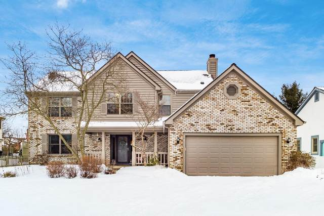 286 Wedgewood Court, Westerville, OH 43082 (MLS #221004549) :: Shannon Grimm & Partners Team
