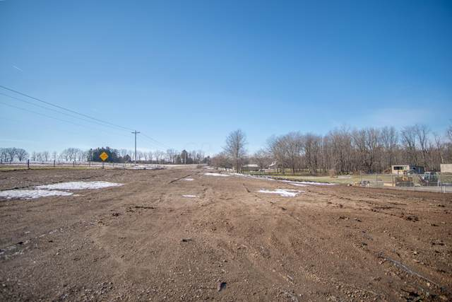 6685 County Road 14, Mount Gilead, OH 43338 (MLS #221004619) :: MORE Ohio
