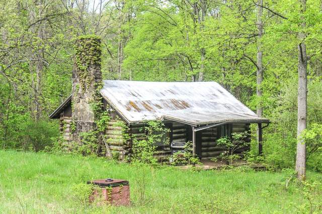 0 Barr Hollow Rd, Reedsville, OH 45772 (MLS #221004952) :: Core Ohio Realty Advisors