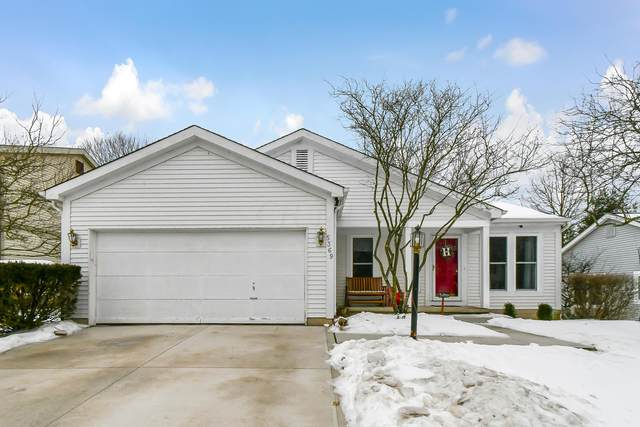 5369 Woodville Court, Columbus, OH 43230 (MLS #221005067) :: RE/MAX ONE