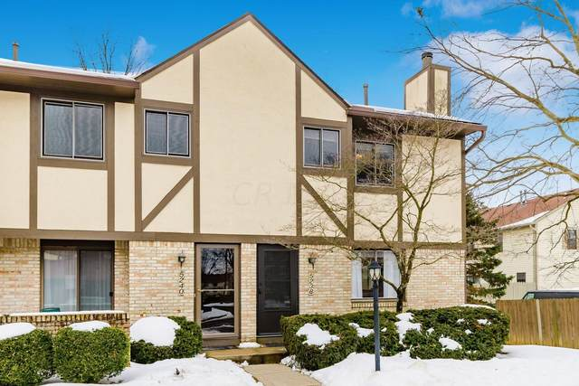 5238 Timberline Road, Columbus, OH 43220 (MLS #221005092) :: The Willcut Group