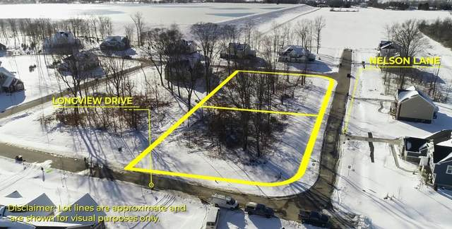 2161 Nelson Lane, Delaware, OH 43015 (MLS #221005115) :: The Holden Agency