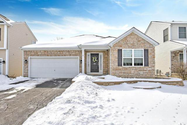 8497 Flowering Cherry Drive, Blacklick, OH 43004 (MLS #221005146) :: Shannon Grimm & Partners Team