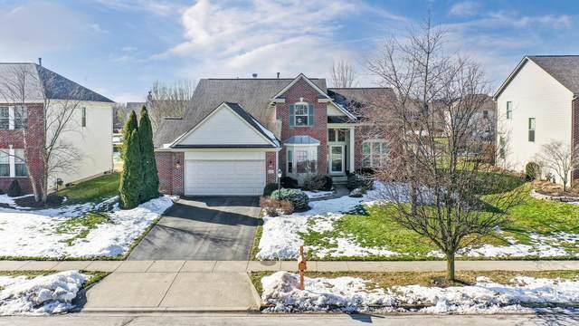 6218 Falcon Chase Drive, Westerville, OH 43082 (MLS #221005693) :: Angel Oak Group