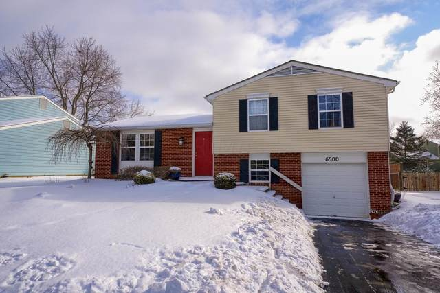 6500 Cherokee Rose Drive, Westerville, OH 43081 (MLS #221005783) :: MORE Ohio