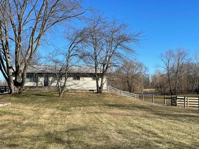4446 Freshwater Road, Delaware, OH 43015 (MLS #221005873) :: Sam Miller Team