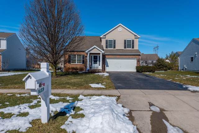 1659 Daffodil Place, Lewis Center, OH 43035 (MLS #221005891) :: RE/MAX ONE