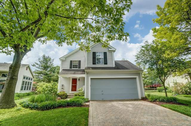 3789 Secretariat Court, Columbus, OH 43221 (MLS #221005938) :: Greg & Desiree Goodrich | Brokered by Exp