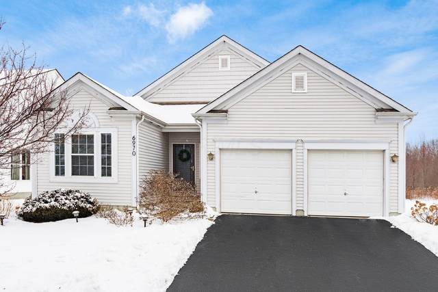 6970 Norton Crossing Street, New Albany, OH 43054 (MLS #221005969) :: RE/MAX ONE