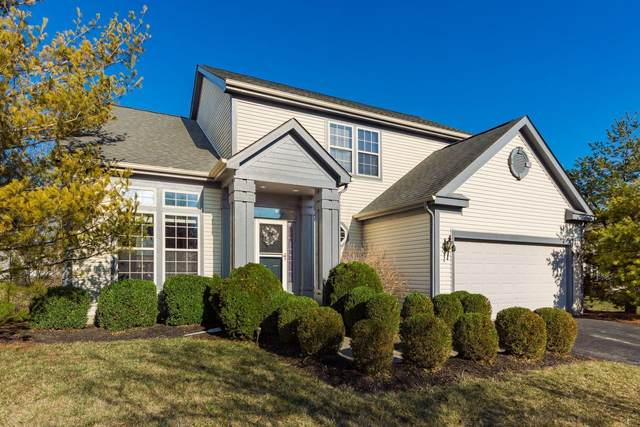 7975 Holderman Street, Lewis Center, OH 43035 (MLS #221006096) :: The Holden Agency