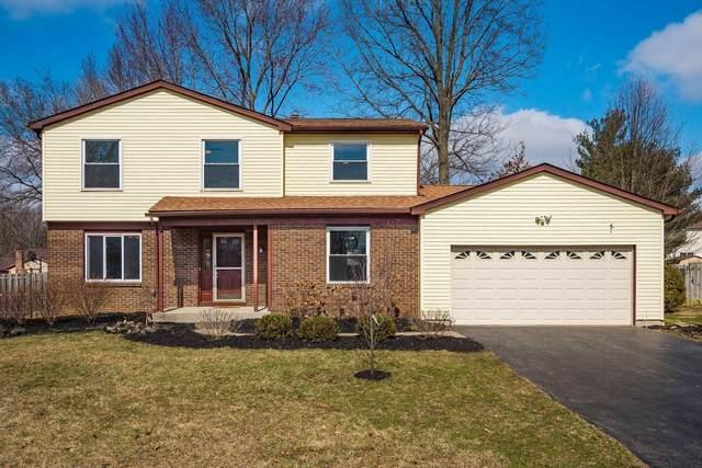 145 Timber Ridge Drive, Pickerington, OH 43147 (MLS #221006159) :: CARLETON REALTY