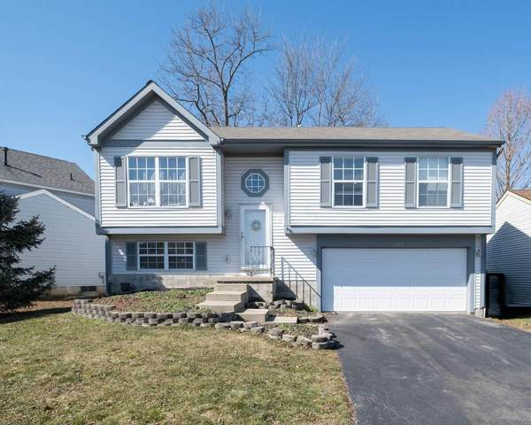 2377 Kittrel Court, Grove City, OH 43123 (MLS #221006188) :: RE/MAX ONE