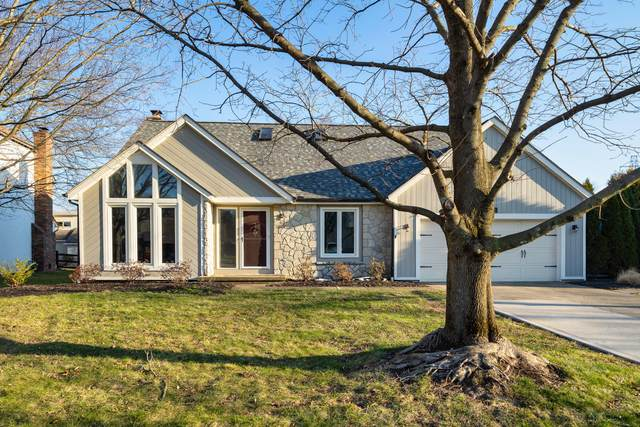 428 Grist Run Court, Westerville, OH 43082 (MLS #221006827) :: MORE Ohio