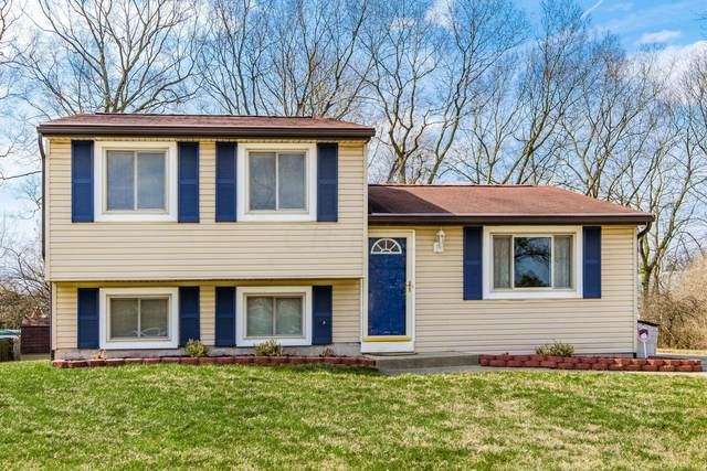 3286 Colony Hill Lane, Columbus, OH 43204 (MLS #221006982) :: RE/MAX ONE