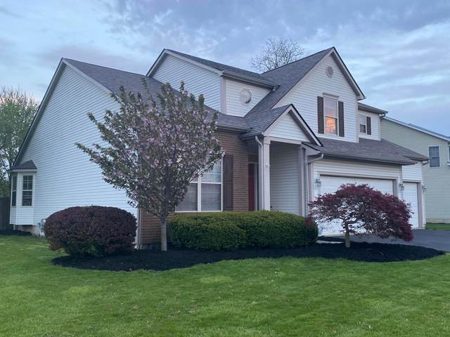8838 Sedona Court, Lewis Center, OH 43035 (MLS #221007137) :: Bella Realty Group