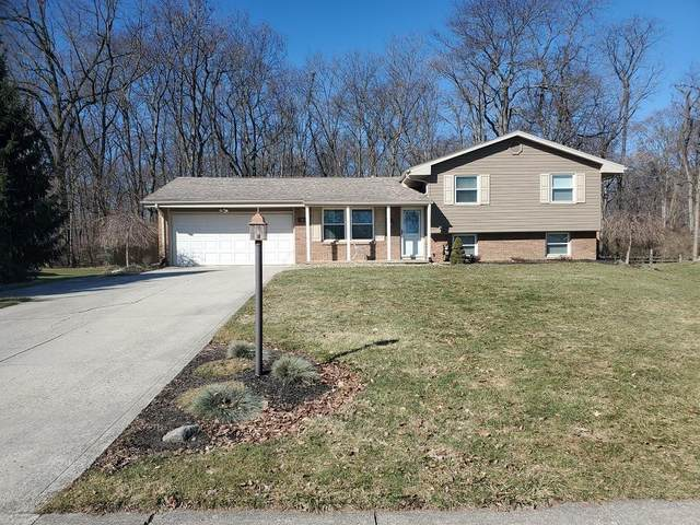 805 Chambord Circle, Marion, OH 43302 (MLS #221007169) :: Exp Realty