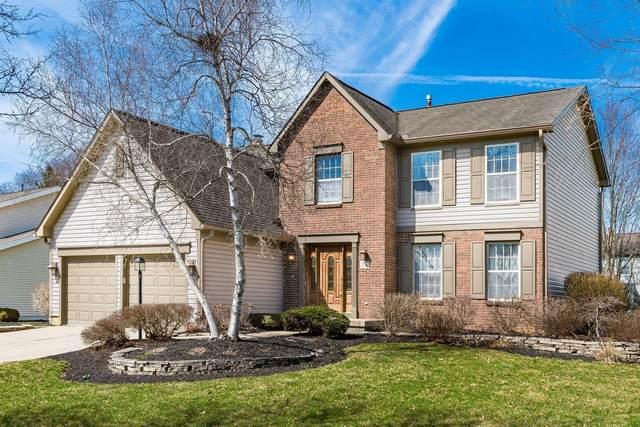 754 Stewart Court, Pickerington, OH 43147 (MLS #221007384) :: MORE Ohio