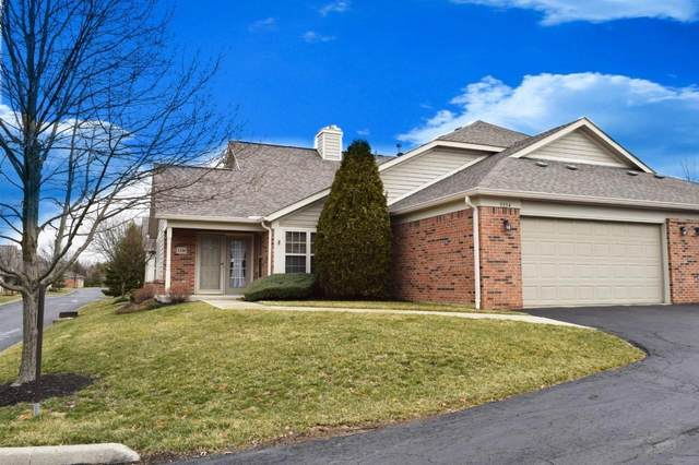 5334 Ruth Amy Avenue, Westerville, OH 43081 (MLS #221007524) :: CARLETON REALTY