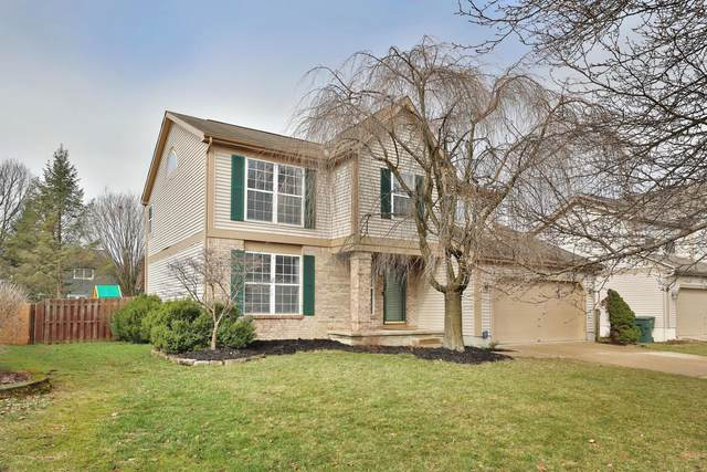 8161 Pelham Drive, Westerville, OH 43081 (MLS #221007711) :: Bella Realty Group