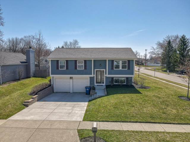 478 Doverwood Drive, Reynoldsburg, OH 43068 (MLS #221008060) :: RE/MAX ONE