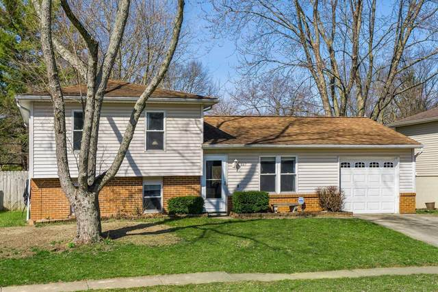 667 Mistletoe Street, Columbus, OH 43230 (MLS #221008313) :: Bella Realty Group